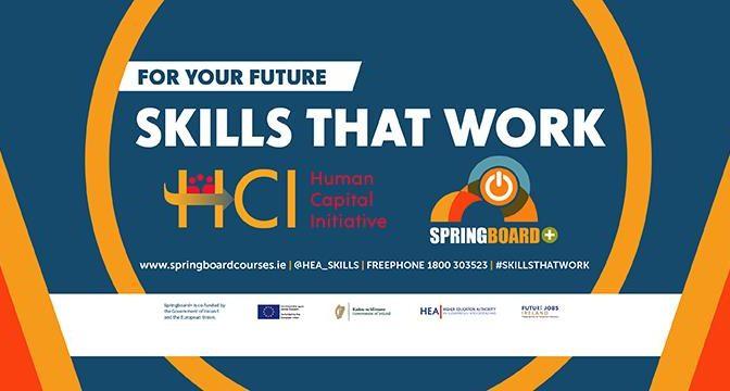 Springboard+ Courses